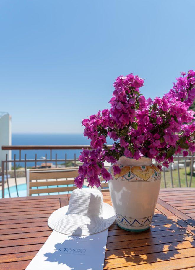 Olga's Residence - Amalfi Coast Villa sorrento apartment private pool Naples Pompeii Capri Island ItalyDSC02079